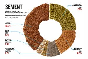 I monopolisti delle sementi: offrono tipi ad alta resa e immuni dai più frequenti parassiti, ma i semi non si riproducono