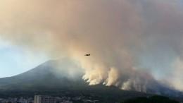 Fiamme e fuoco sul Vesuvio, ma non dal suo famoso cratere...
