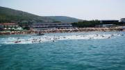 Nuoto in acque libere. Un recente campionato...