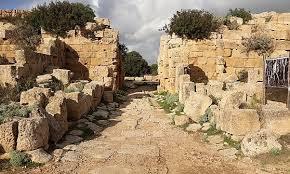Selinunte etta la nuova Pompei