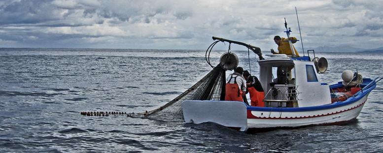 La piccola pesca: tanto fascino e uno dei mestieri più duri...