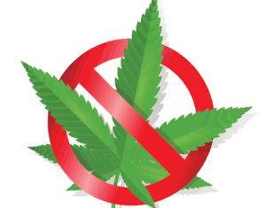 no alla cannabis coltivata liberamente proposta di legge Mantero (5St)
