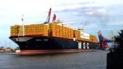 """Nave porta containers (TEU). Ecco un esempio di gigantismo navale. Si rimane perplessi , pensando al piccolo Mar   Mediterraneo. Ma i trasporti per mare e per terra (ferrovie) sono una colonna portante dello sviluppo. C'è chi se ne preoccupa e, addirittura, chi ne nega l'importanza per opporsi a progetti come la Tav Torino Lione o come il Ponte sullo Stretto... Ma lo sviluppo nel mondo e soprattutto nel Mediterraneo ha potenti nemici che si servono di ogni mezzo, fra cui la persuasione strisciante di natura mediatica. Lo sviluppo è indicato come una mira da stolti, opponendovi le necessità della difesa dell'ambiente. Ne è nato da tempo il concetto di """"sviluppo compatibile"""", ma il problema viene certamente esasperato. da chi ne ha interesse. Né è vero che la politica abbia interesse contrario. Le politiche ambientali rendono l'incredibile a chi amministra... Lo sviluppo è decisamente auspicabile sia dai ricchi sia dai poveri, per migliorare le condizioni di vita e sconfiggere la povertà."""