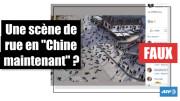 """Fake foto e relative news. Ecco la foto di una performance artistica spacciata per un'immagine delle strade di Wuhan. Si vedono, inquadrate dall'alto, molte persone sdraiate a terra in una città non meglio identificata. Il testo dice: """"Adesso in Cina"""". Si tratta però di una performance realizzata nel 2014 in Germania, a Francoforte, per commemorare le vittime delle deportazioni naziste."""