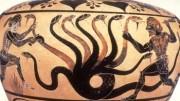 L'Idra di Lerna. Così dipingono l'influenza da Covid 19. Se non è la peste del 2000, è quella del 2020. Non c'è che dire... Quest'Idra dei Greci ha 9 teste, una in più dell'octopus (magia), 2 in più dell'Idra classica dalle 7  teste. Attenti:era un simbolo della paura immaginaria che serpeggia sempre come i suoi 9 serpenti. Ucciderla  fu compito di Eracle, Ercole: una delle 7 fatiche! Ci vorrà un Ercole moderno per annientare il Covid?