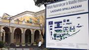 Il grande atrio del monumentale Ospedale Spallanzani di Roma, vanto della sanità italiana nel mondo, assieme al Bambin Gesù.