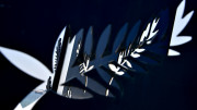 #7 Cannes 2020 _ official press release - Festival de Cannes