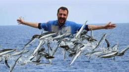 Che cosa se n'è fatto delle sardine? Le avrà mangiate tutte Salvini?
