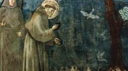 Giotto: San Francesco predica agli uccelli. Per 'aggredire' Francesco oggi c'è anche chi critica con durezza la sublime e poetica arte del grande Giotto. Pietra miliare della pittura e delle'arte figurativa in genere, Giotto rappresenta  la realtà terrena e attraverso questa giunge alla realtà divina.