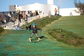 Il termovalorizzatore di Copenaghen, tanto ecologico da costruirvi sopra un parco giochi con pista da scì sintetica: distrugge tutto, plastica compresa, ricavandone direttamente, senza bisogno di passaggi intermedi quali biomasse, pastazzi etc. penergia...