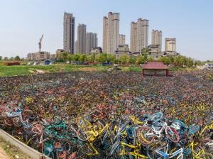 Presso una moderna città. altro cimitero. Sono le bicvi in disuso dicui i cinesi si liberano. Si sono ricordati che ...sonostate inventate le aytomobili le moto.